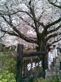 2008_071_2
